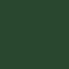 Зелёный хамелеон